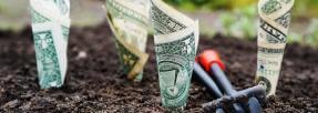 epargne-assurance-vie-argent-sous-investissement