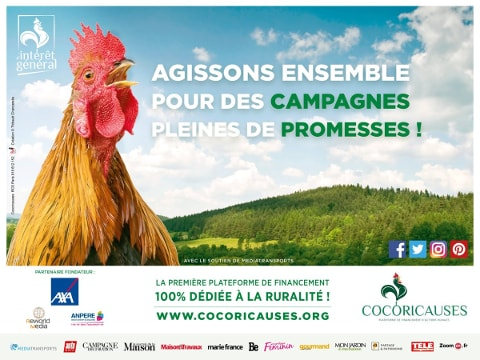 affiche-cocoricauses