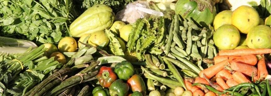 La nourriture bio et locale arrive à la cantine