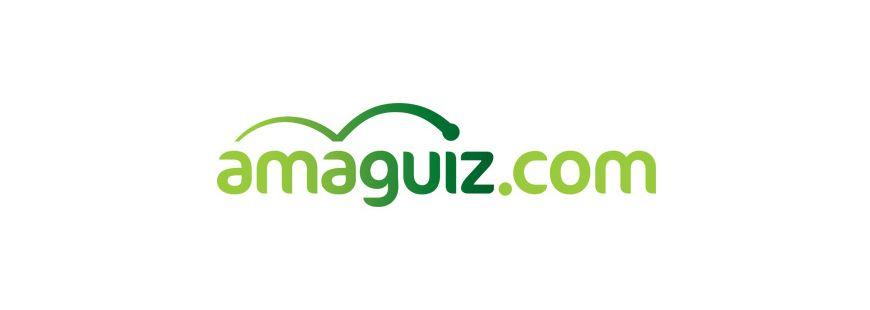 L'assureur Amaguiz enfin dans le vert ?