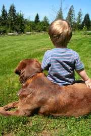 Les animaux et les enfants : quelle cohabitation ?
