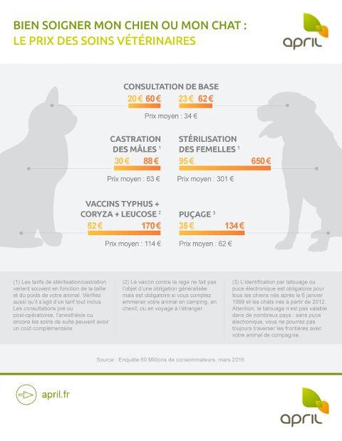 infographie-bien-soigner-chien-chat-prix-soins