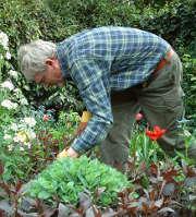 Vous êtes fier de votre jardin ? Assurez-le !