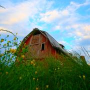 Assurance habitation et dépendance