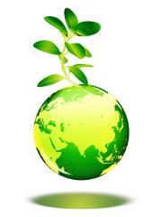 L'heure est à l'électricité verte chez la Macif