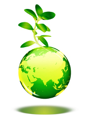 environnement-respect-ecologie