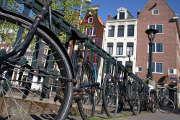 la majorité des loueurs de vélo sont implantés en centre-ville