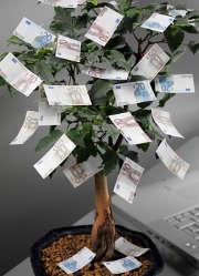 billets-argent-arbre