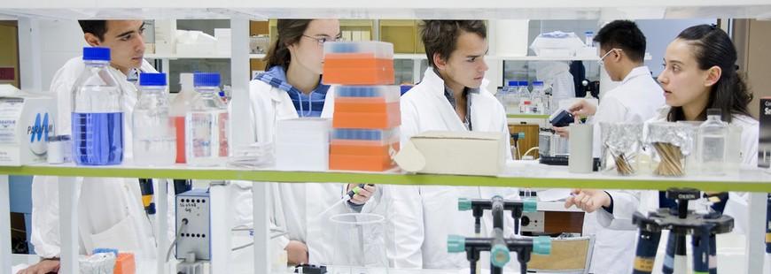 bacterie-laboratoire-etudiant
