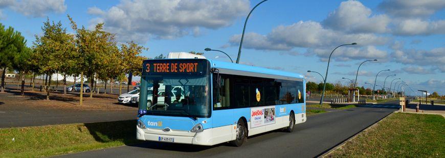 bus-car