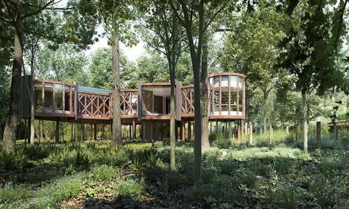 Cabane dans les arbres Savills