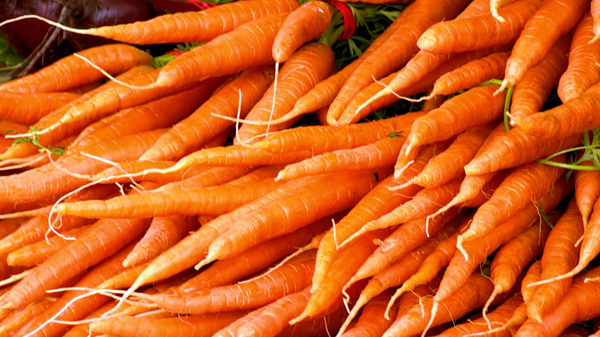 carottes(2)