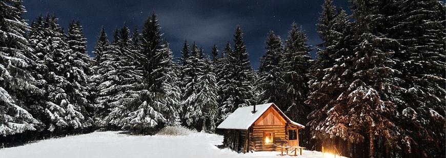 Avez-vous prévu de partir en vacances cet hiver ?
