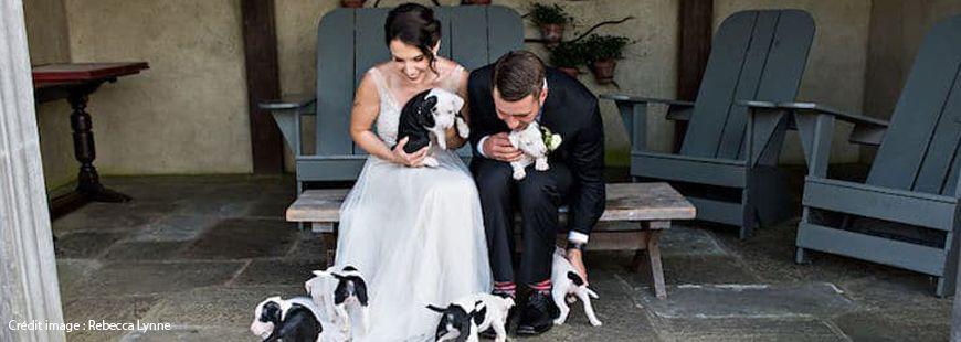Becky et John sont deux anciens éleveurs de chiens
