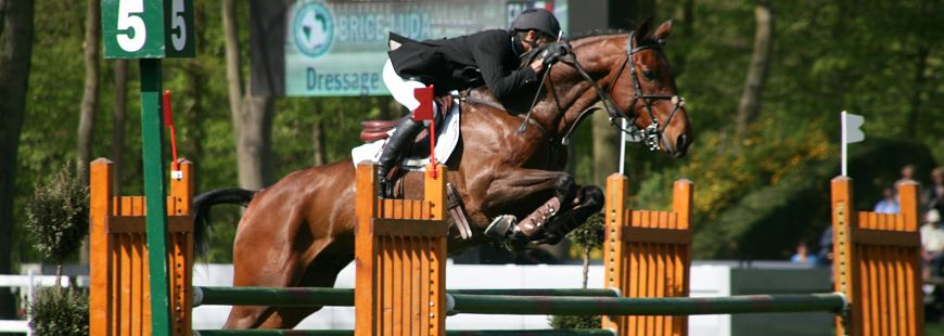 Comment les cavaliers sont-ils couverts en équitation ?