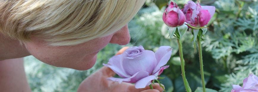 La perte d'odorat constitue-t-elle un symptôme de la maladie d'Alzheimer ?