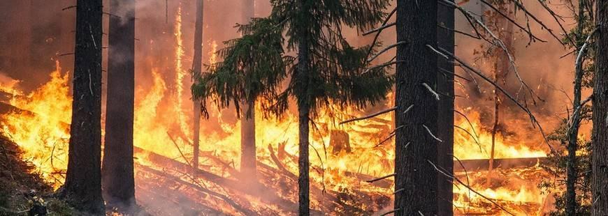 En cas d'incendies veillez aux garanties de votre assurance habitation