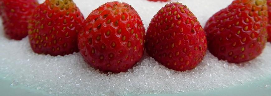 Attention aux aliments végétaux choisis dans le cadre d'un régime végétarien