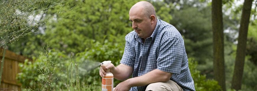 Trop de pesticides dangereux vendus en libre-service et sans conseil