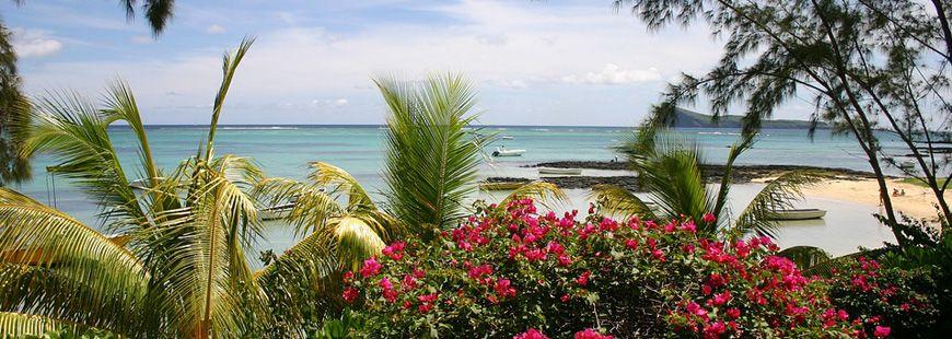 Île Maurice : quels vaccins  envisager ?