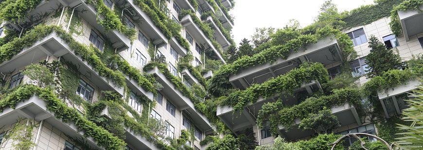 Objectif gouvernemental : 500 000 rénovations énergétiques par an