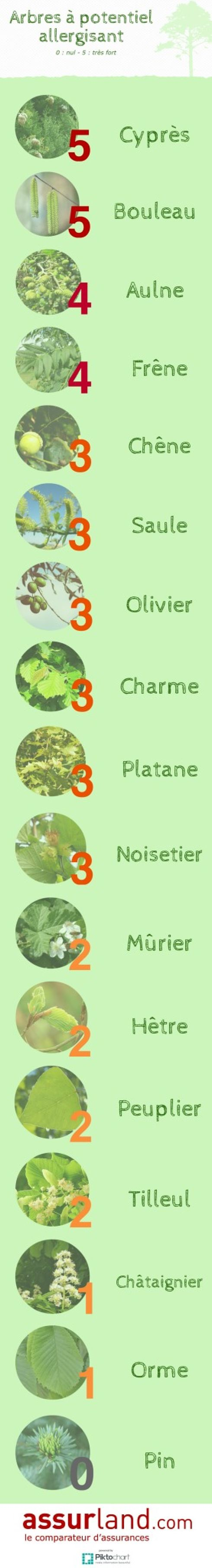 Infographie-arbres-potentiel-allergisant