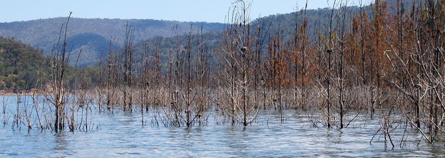 Catastrophes naturelles : 2016, une année record pour l'assurance