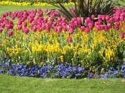 Etes-vous couvert pour les équipements de votre jardin ?