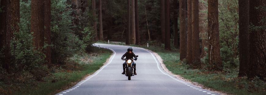 motard-moto-foret