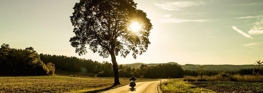 moto-route-arbre-coucher-soleil