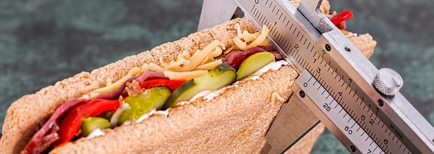 sandwich-nutrition-suivi