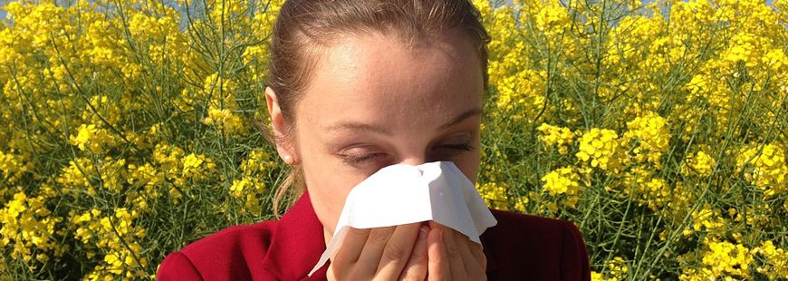 20 % des Français sont allergiques