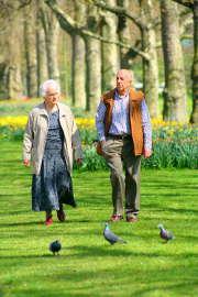 Le « Train Bien Vivre pour Bien Vieillir » veut vous aider à vieillir du mieux possible