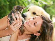 Chien chat : entre soins et mutuelle santé