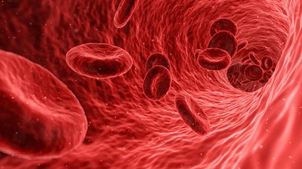 sang-globule-rouge