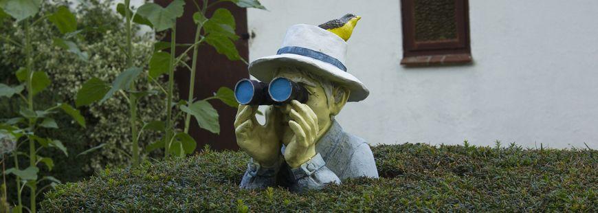 statue-jumelles-surveillance-maison