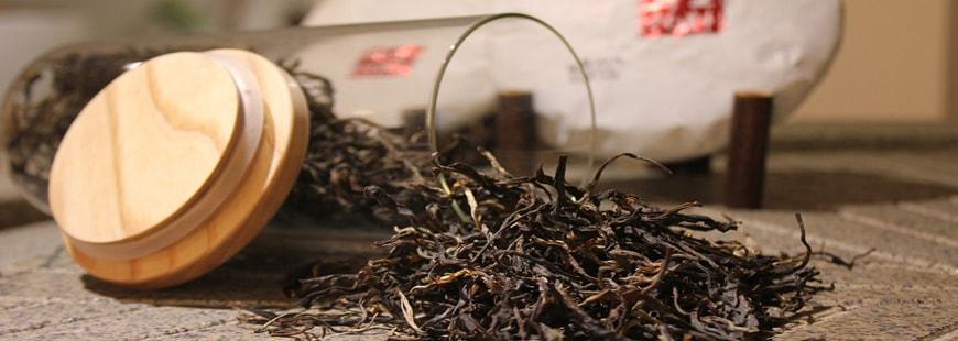 Une nouvelle étude met en évidence les bienfaits du thé noir
