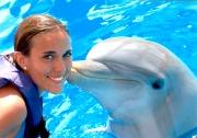 Thérapie à l'aide des dauphins !