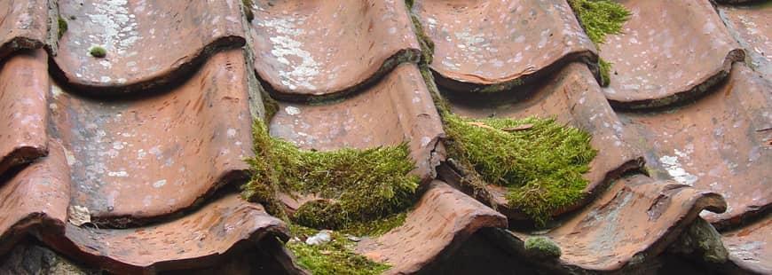 Les travaux affectant les toitures sont concernés par la garantie décennale.