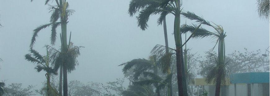 Comment être indemnisé en cas de tempête ?