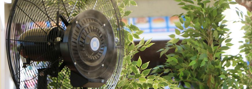 Optez pour un ventilateur pour créer de l'air chez vous
