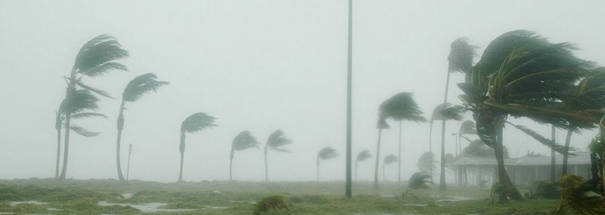 Les catastrophes naturelles ont coûté 2 fois plus cher aux assureurs en 2017 qu'en 2016