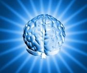 Zone du souvenir du cerveau